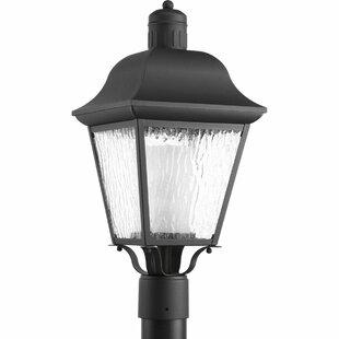 Alcott Hill Thornton 1-Light Lantern Head