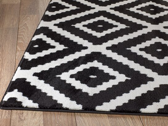 cheney black indoor area rug - Black And White Rugs