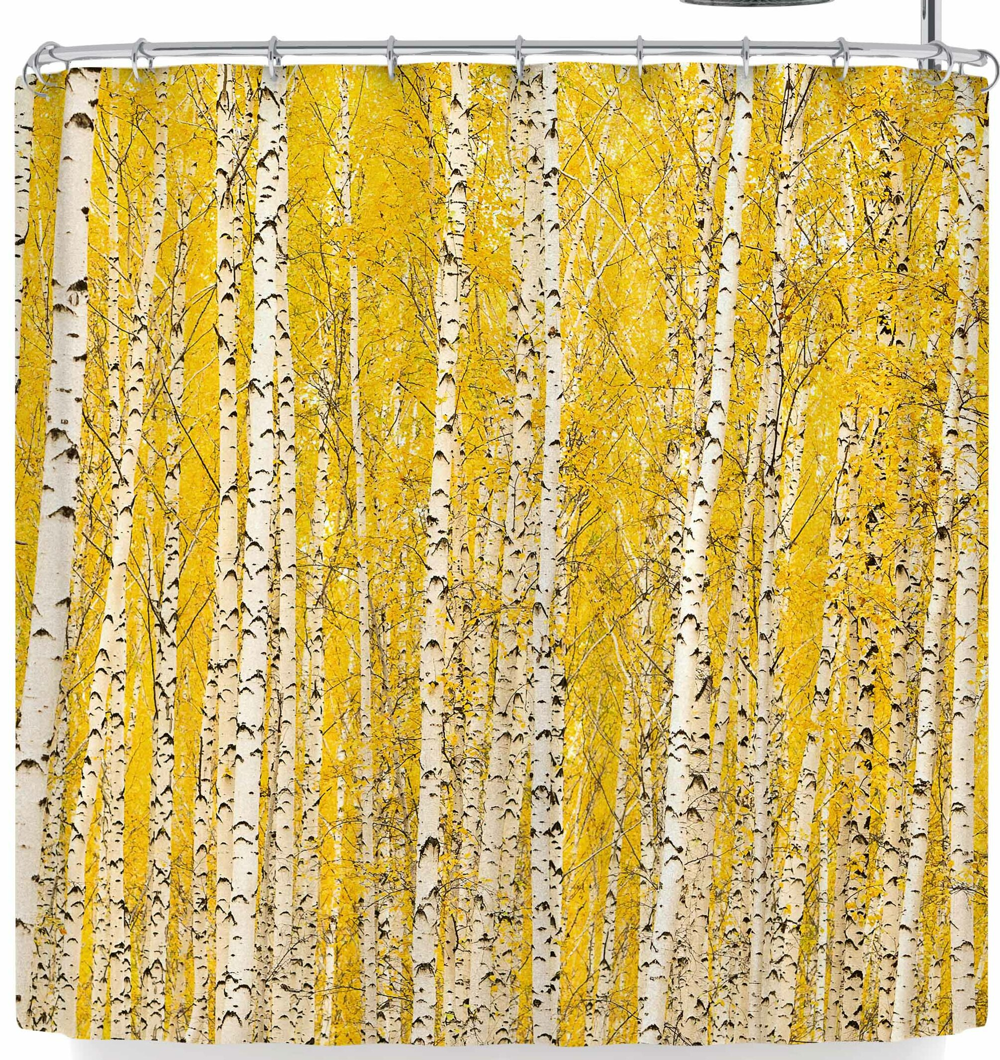 East Urban Home Susan Sanders Birch Trees Shower Curtain