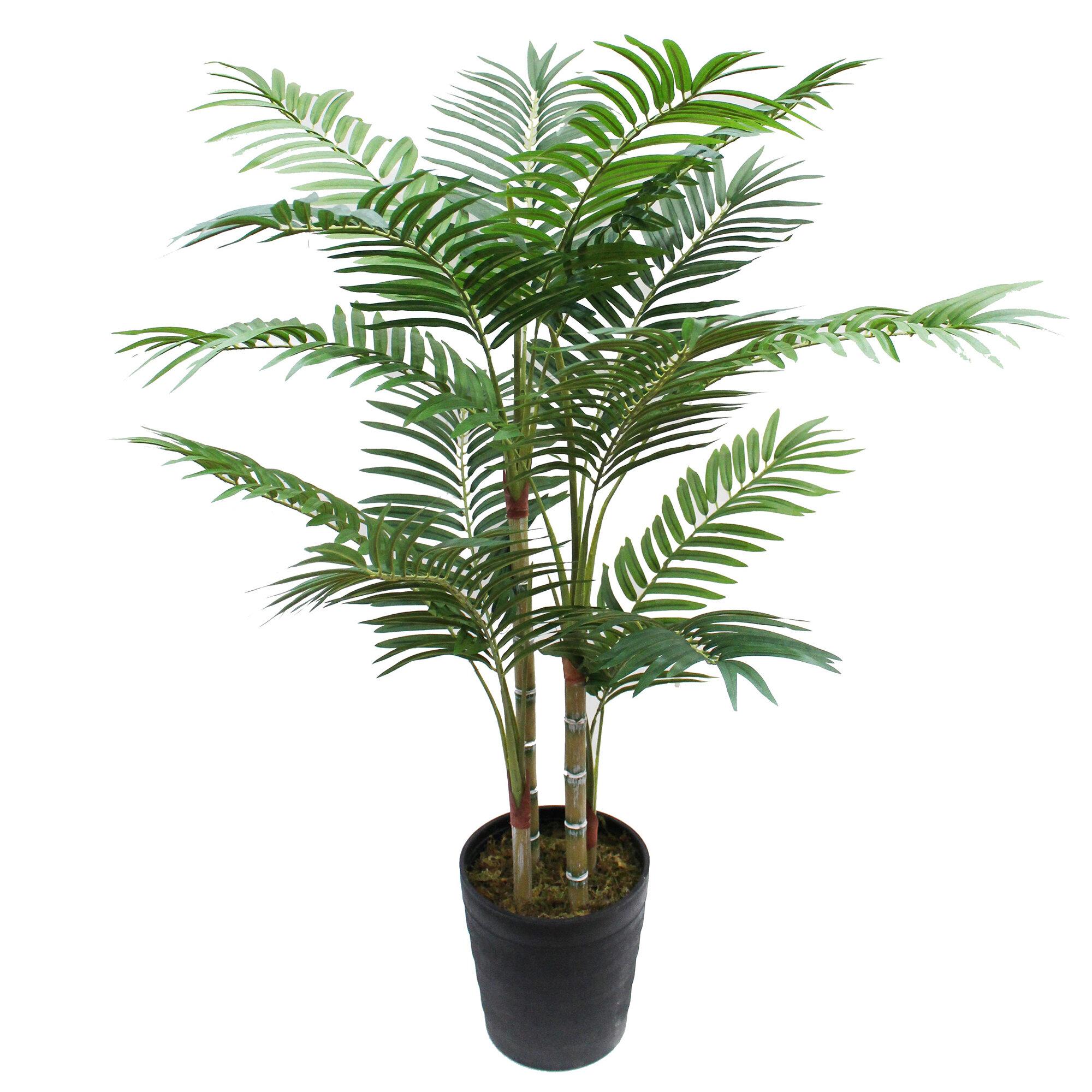 Bayou Breeze 41 Artificial Palm Tree In Pot Reviews Wayfair