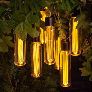 Bonar Festoon Lights By Williston Forge