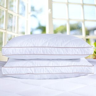 Puredown Goose Down Feather Pillow (Set of 2)