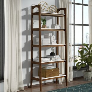Erin Ladder Bookcase by Langley Street