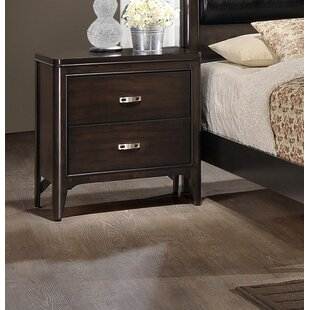 Affordable Price Babcock 2 Drawer Nightstand by Orren Ellis