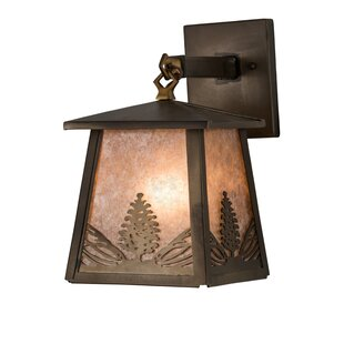 Affordable Wyncote Outdoor Wall Lantern By Loon Peak