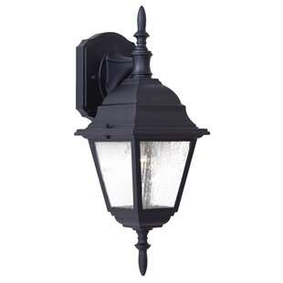 Great Outdoors by Minka Bay Hill 1-Light Outdoor Wall Lantern