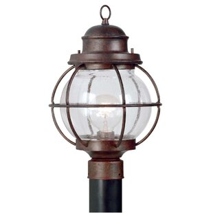 Great Price Cason 1-Light Lantern Head By Beachcrest Home