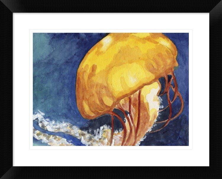Naxart Jellyfish Framed Graphic Art Print Wayfair
