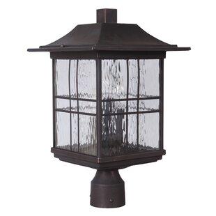 Sanderson 3-Light Lantern Head by Darby Home Co