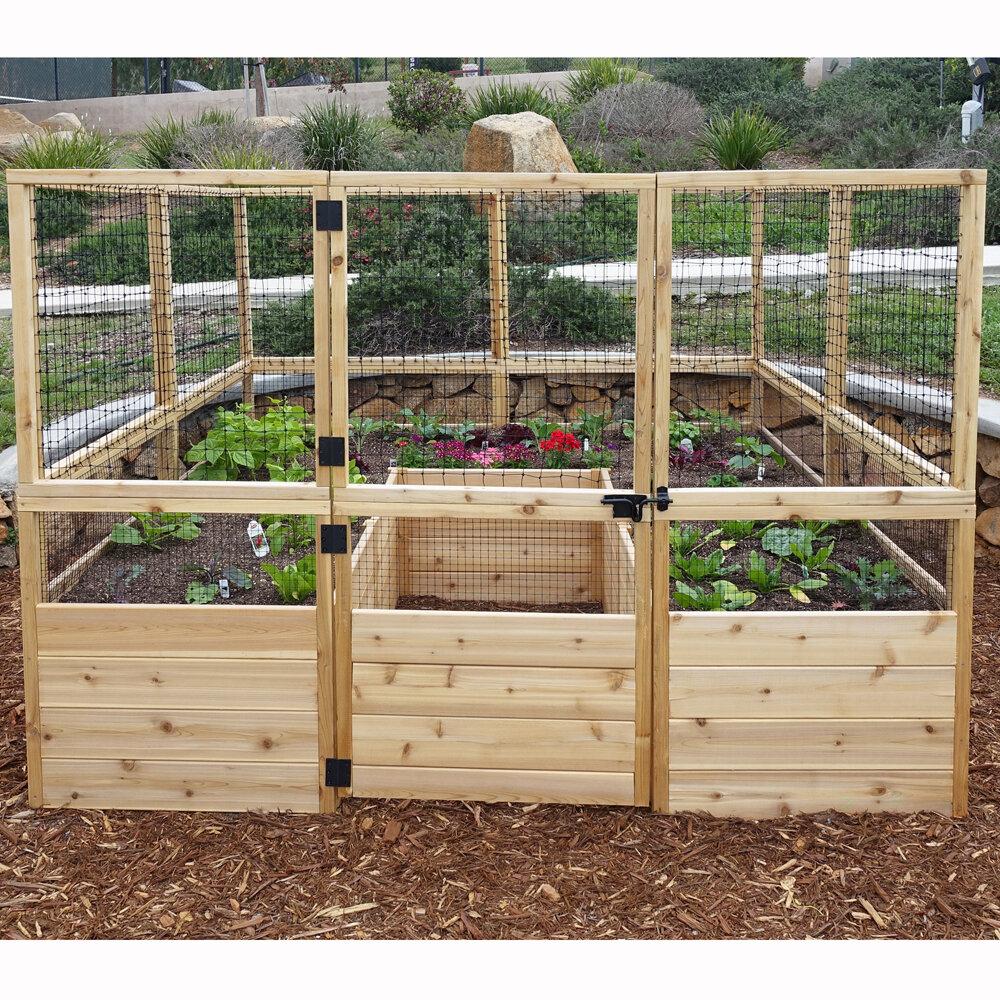 6 ft x 6 ft Cedar Raised Garden Bed with Deer Fence Kit