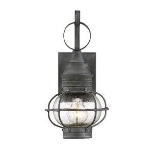 Fallsburg 1-Light Outdoor Wall Lantern