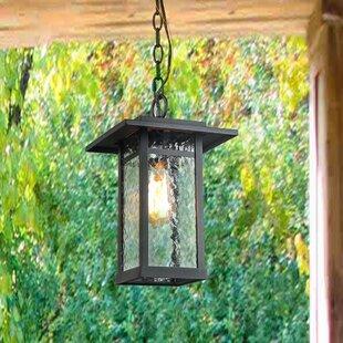 Breakwater Bay Eldredge Transitional 1-Light Outdoor Hanging Lantern