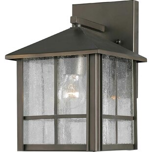 Hesse 1-Light Outdoor Wall Lantern