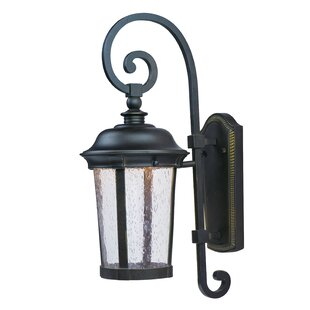 Darby Home Co Sandusky 1-Light Outdoor Wall Lantern