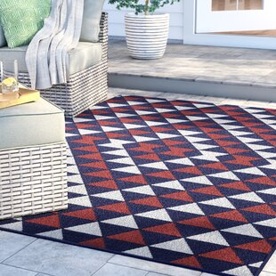 Amora Hand-Tufted Indoor/Outdoor Area Rug