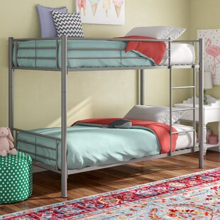 Reviews Pineland Twin over Twin Bunk Bed by Harriet Bee Reviews (2019) & Buyer's Guide
