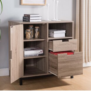 Burrowes 2-Drawer Vertical Filling Cabinet with Elegant Storages