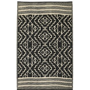 Tayler Indoor Outdoor Black Beige Area Rug