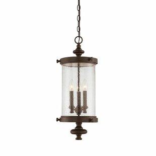 Tool 3 Light Outdoor Hanging Lantern By Rosalind Wheeler