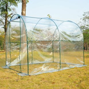 Wall 2m W X 2.5m D Greenhouse By Sol 72 Outdoor