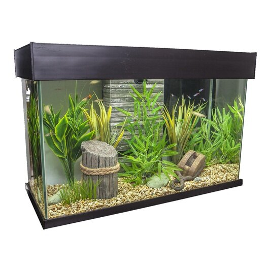 Ainsley 25 Gallon Accent Aquarium