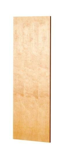 Custom Door with Flat Panel