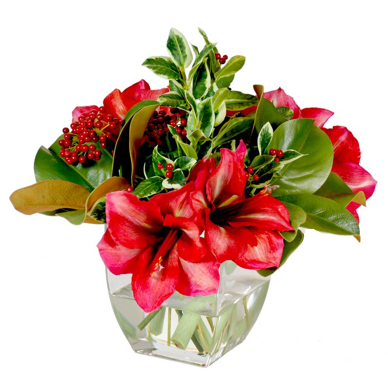 Amaryllis Holiday Bouquet Mixed Centerpiece in Glass Vase