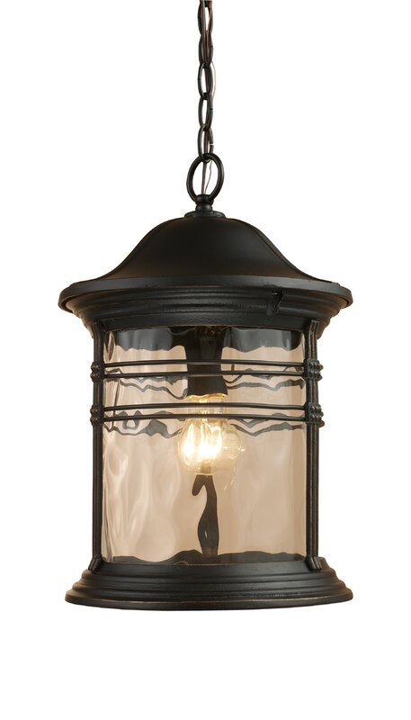 Heimbach 1-Light Outdoor Hanging Lantern