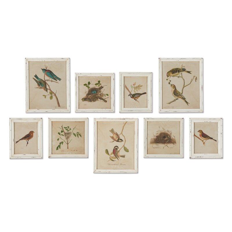 'Aviary Bird & Nest Habitat' Framed Graphic Art Print