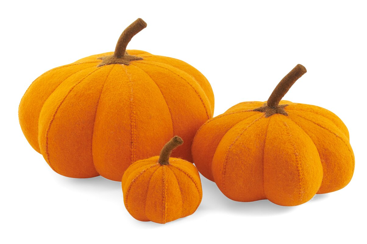 3 Piece Pumpkin Patch Set