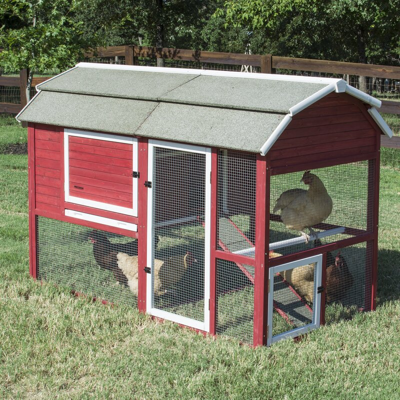 Chicken Coop with Roosting Bar