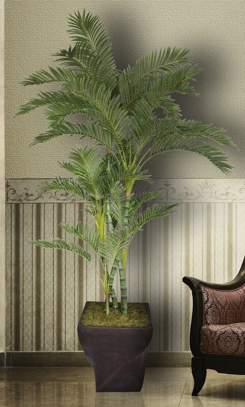 Tall Floor Palm Tree in Planter