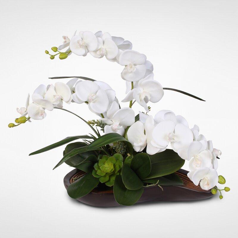 Handmade Phalaenopsis Silk Orchids with Succulents Floral Arrangement