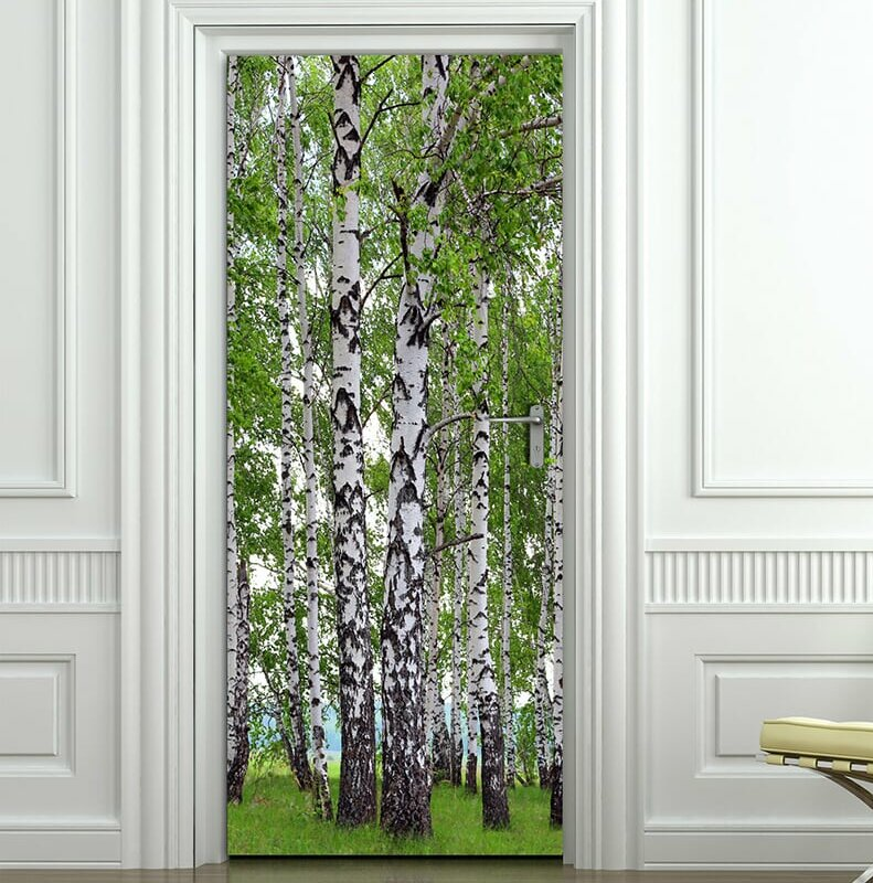 "Birch Trees Forest Non-Woven 6.7' L x 36"" W Wall Mural"