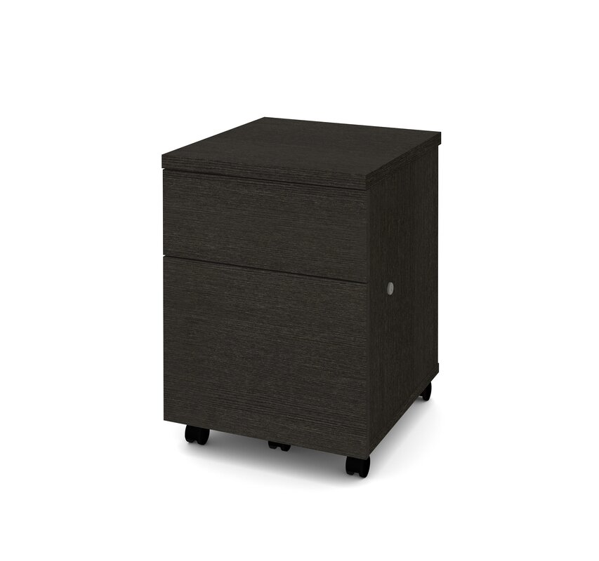 Shyanne 2-Drawer Mobile Vertical Filing Cabinet