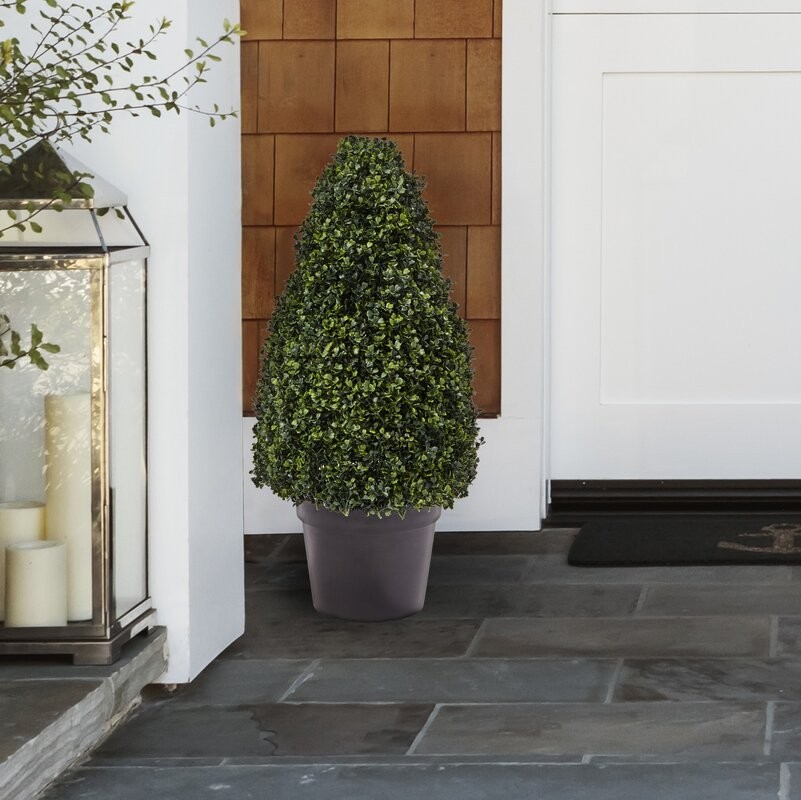 Artificial Boxwood Topiary in Planter