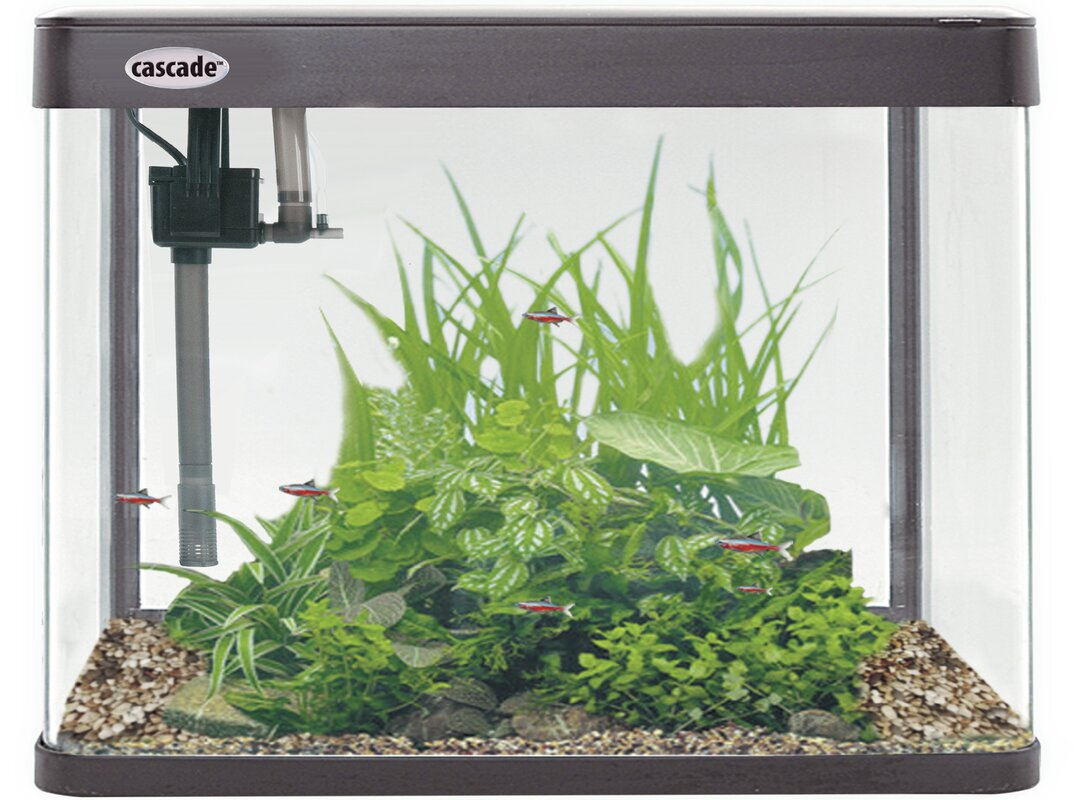 12 Gallon Cascade Aquarium Kit