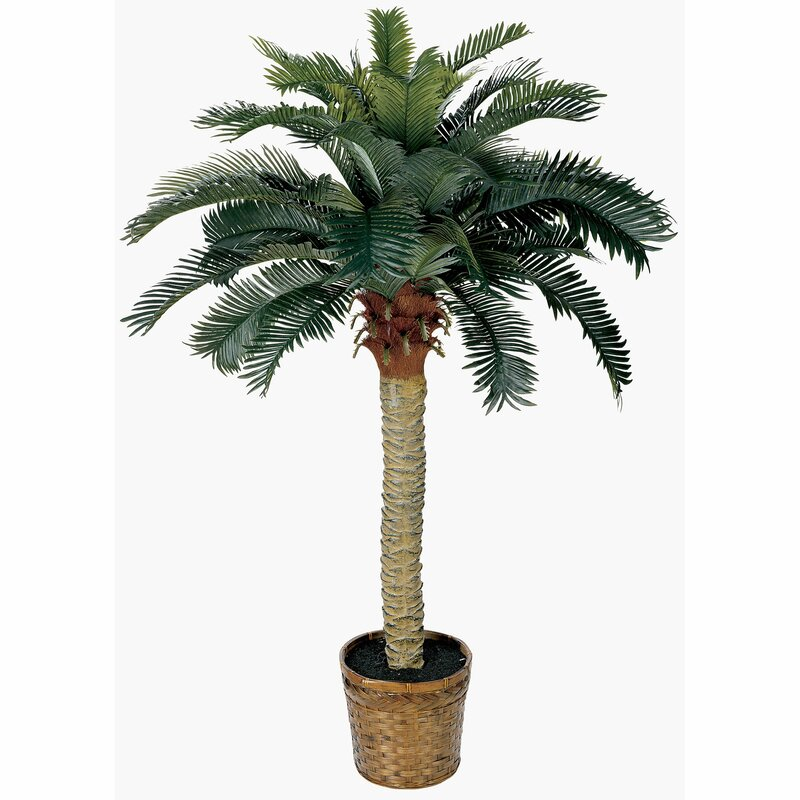 Palm Tree with Basket