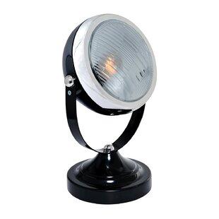 Skylar 1-Light Outdoor Spo..