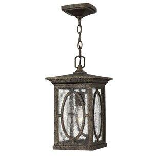 Bloomsbury Market Mikell 1-Light Outdoor Hanging Lantern