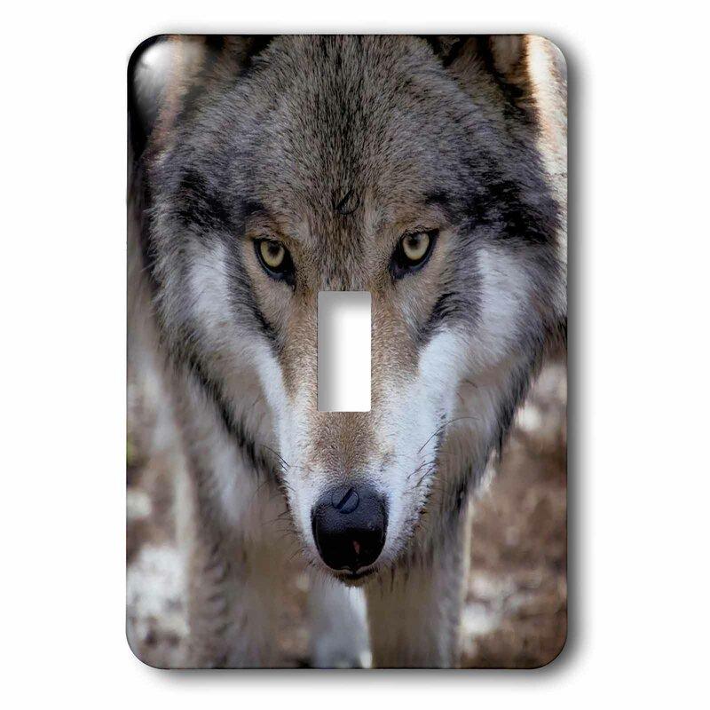 3drose New Jersey Wolf 1 Gang Toggle Light Switch Wall Plate Wayfair