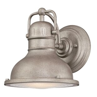 Breakwater Bay Gholston LED Outdoor Barn Lantern