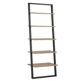 Theophanes 2 Tone Ladder Bookcase