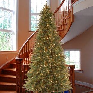 12 Foot Christmas Tree.9 Foot Christmas Trees You Ll Love In 2019 Wayfair