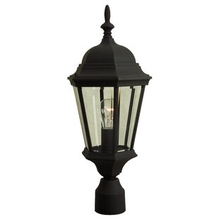Price Check Oakhill 1-Light Outdoor Lantern Head By Charlton Home