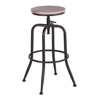 Delois Height Adjustable Swivel Bar Stool (Set Of 2) By Williston Forge