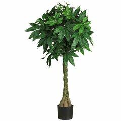 Lucky Tree Wayfair