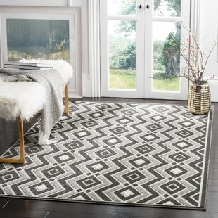 Arend Gray Indoor/Outdoor Area Rug