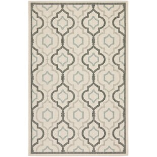 Asheville Beige/Gray Indoor/Outdoor Area Rug