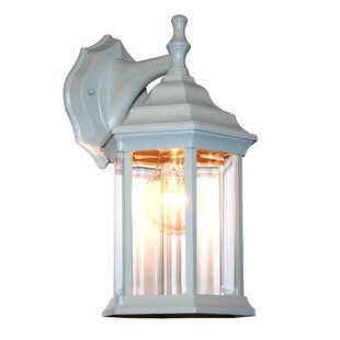Reviews Digennaro 1-Light Outdoor Wall Lantern By Charlton Home